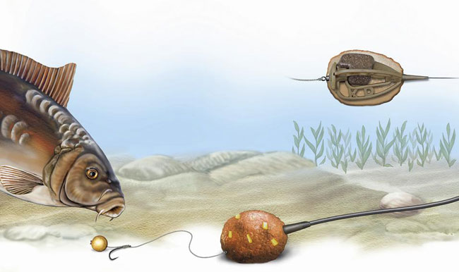 Ловля карпа на методную кормушку (Питер Веббер)