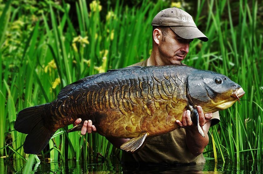 Scaley / Alistair White (Алистер Уайт) / Wraysbury 2