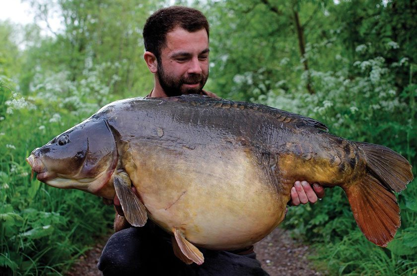 El 's Fish (53lb 8oz) / Люк Валлори (Luke Vallory) / North Met / 2016 г.