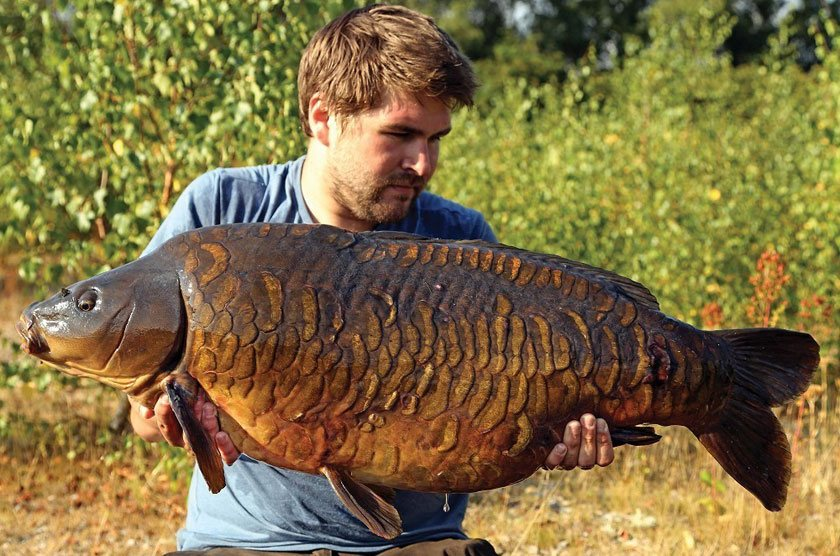 Jamie's (35lb 2oz) / Маркус Ховарт (Marcus Howarth) / Roach Pit