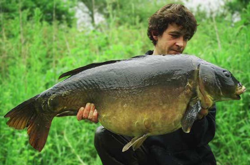Nutsey Mirror (45lb 10oz) / Терри Хирн (Terry Hearn) / Nutsey