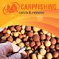 Тестирование «Red Fish» и «Chocolate Malt» (Терри Херн)